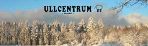 ullcentrum_300x94